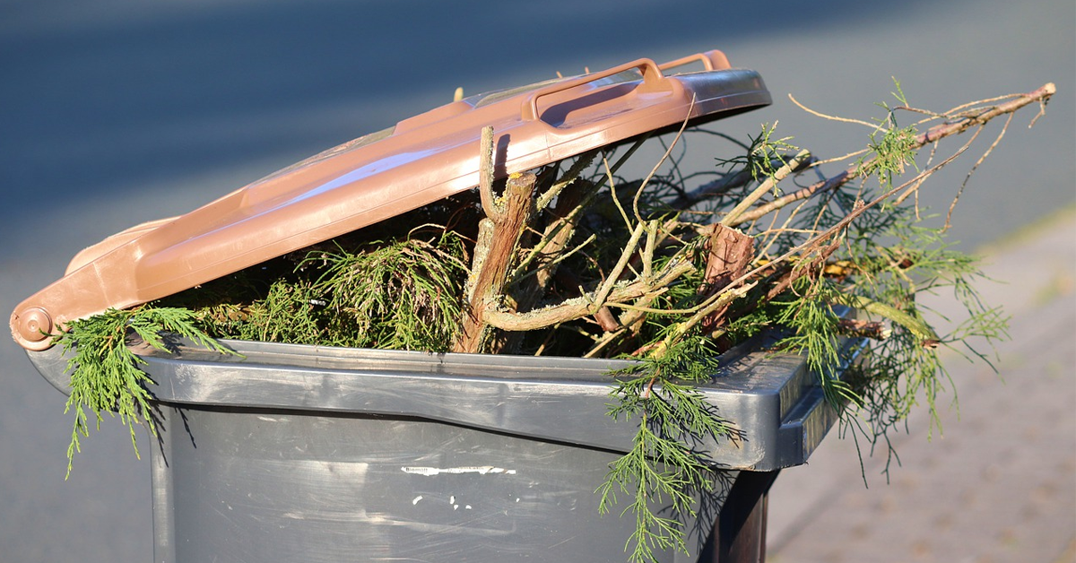 Full green garden waste bin awaiting collection